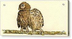 Little Owls Acrylic Print