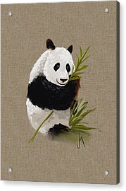 Little Panda Acrylic Print by Veronica Minozzi