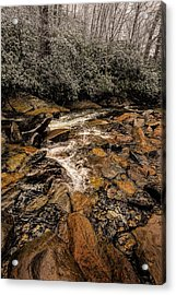 Little Pidgeon River2 Acrylic Print by Tom  Reed