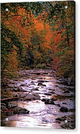 Little River In Autumn Acrylic Print by Dan Sproul