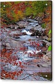 Little River Acrylic Print