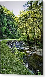 Little River Road Acrylic Print by Cricket Hackmann
