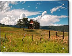 Little Shack In Ridgway Acrylic Print