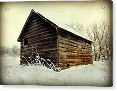 Little Shed Acrylic Print by Julie Hamilton