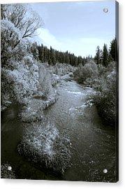 Little Spokane River Beauty Acrylic Print by Daniel Hagerman