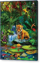 Acrylic Print featuring the drawing Little Tiger by Jan Patrik Krasny
