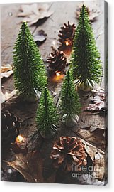 Acrylic Print featuring the photograph Little Trees With Pine Cones And Leaves  by Sandra Cunningham