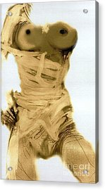 Little Warrior - Female Nude Acrylic Print by Carolyn Weltman