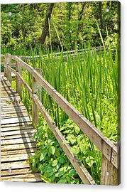 Acrylic Print featuring the photograph Little Wooden Walking Bridge by Jean Goodwin Brooks
