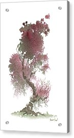 Little Zen Tree 1117 Acrylic Print by Sean Seal