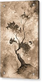 Little Zen Tree 873 Altered Acrylic Print by Sean Seal