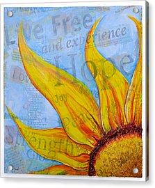 Live Free Acrylic Print by Lisa Fiedler Jaworski
