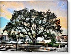 Live Oak Artistic Trendering Acrylic Print by Dan Friend