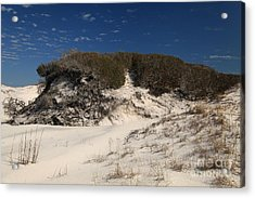 Lively Dunes Acrylic Print by Adam Jewell