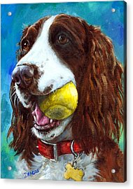 Liver English Springer Spaniel With Tennis Ball Acrylic Print by Dottie Dracos