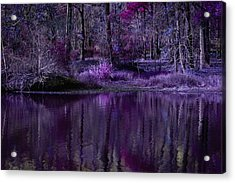 Living In A Purple Dream Acrylic Print by Linda Unger