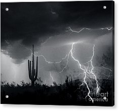 Acrylic Print featuring the photograph Living In Fear by J L Woody Wooden