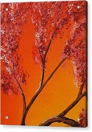 Living Loving Tree Top Left Acrylic Print by Darren Robinson
