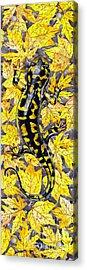 Acrylic Print featuring the painting Lizard In Yellow Nature - Elena Yakubovich by Elena Yakubovich