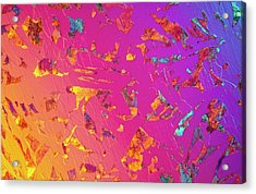 Lm Of C35 Steel In Thin Section Acrylic Print by Astrid & Hanns-frieder Michler/science Photo Library