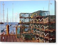 Lobstah Traps Acrylic Print by Joann Vitali