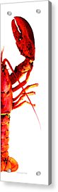 Lobster - The Right Side Acrylic Print by Sharon Cummings