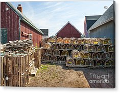 Lobster Traps In North Rustico Acrylic Print by Elena Elisseeva