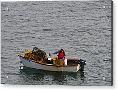 Lobsterman Cleans Trap Acrylic Print by Mike Martin