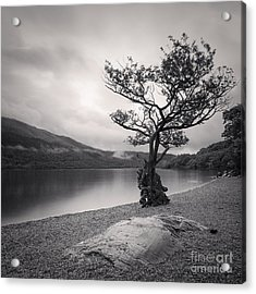 Loch Lomond Scotland Acrylic Print by Colin and Linda McKie