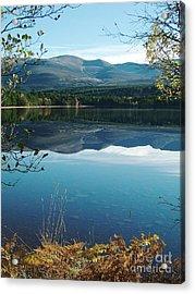 Loch Morlich - Autumn Acrylic Print by Phil Banks