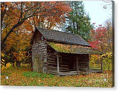 Acrylic Print featuring the photograph Log Cabin 1 by Jim McCain