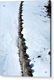 Log Fence In The Snow Acrylic Print by Nancy Mueller
