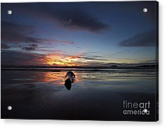 Acrylic Print featuring the photograph Logged Out  by Gary Bridger
