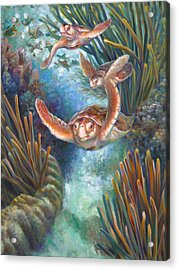 Loggerhead Sea Journey IIi Acrylic Print