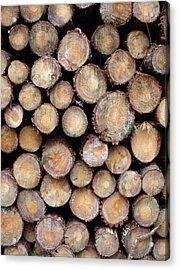 Logs Faces Acrylic Print by Michel Mata