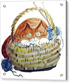 Lois Hides In The Basket Of Knitting Acrylic Print by Ellen Miffitt