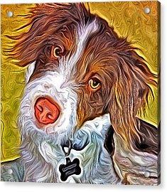 London The Dog Portrait Acrylic Print by Artistinoz Jodie sims