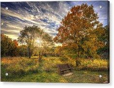 Lone Bench Under Tree - Fall Sunset - Retzer Nature Center - Waukesha Wisconsin Acrylic Print by Jennifer Rondinelli Reilly - Fine Art Photography