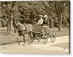Lone Four Wheel Cart Acrylic Print by Wayne Sheeler