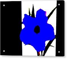 Lone Jack Blue Acrylic Print