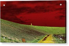 Lone Man And His Best Friend Acrylic Print by JCYoung MacroXscape