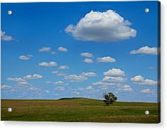 Lone Tree Bluff Acrylic Print