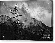 Acrylic Print featuring the photograph Lone Tree by JRP Photography
