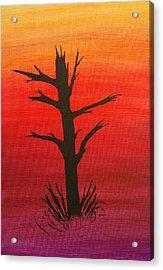 Lone Tree Acrylic Print by Keith Nichols