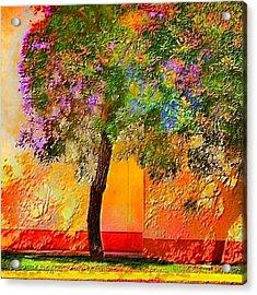 Lone Tree Orange Wall - Square Acrylic Print