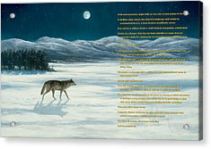 Lone Wolf In Winter   Version 1 Acrylic Print by Steve Swavely