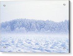 Loneliness In Winter Acrylic Print by Patrick Kessler
