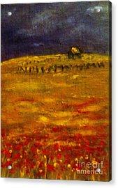 Lonely Farmhouse Acrylic Print by C Fanous