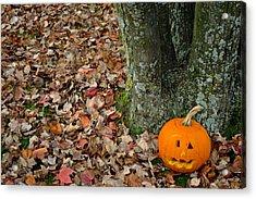 Lonely Pumpkin Acrylic Print