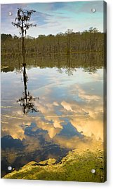 Lonely Reflection Acrylic Print by Denis Lemay